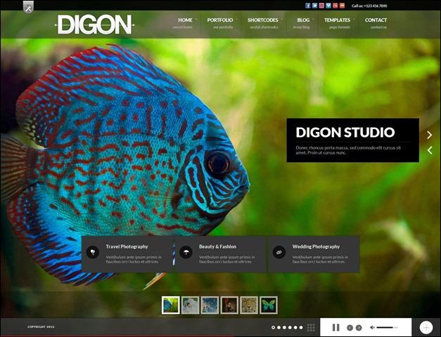 Digon Responsive Fullscreen