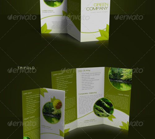 Creative Premium Brochure Template Designs Pixelscom - Brochure template for indesign