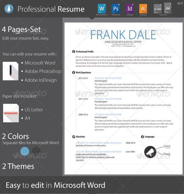 professional resume clean / cv / curriculum vitae - Resume/CV Templates