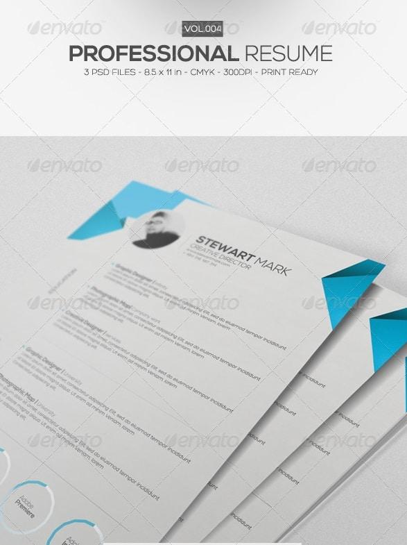 professional resume vol.4 - Resume/CV Templates